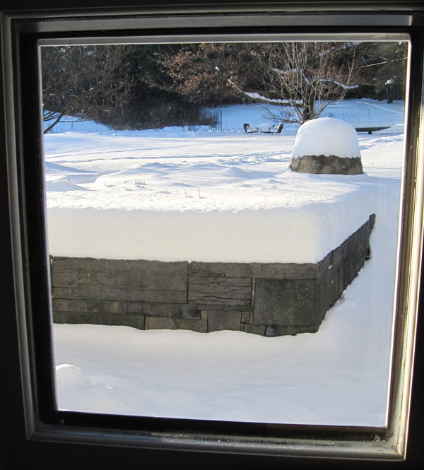 The view from our dining room window