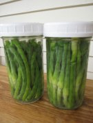 pickled-scapes