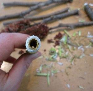 hollowed-tube