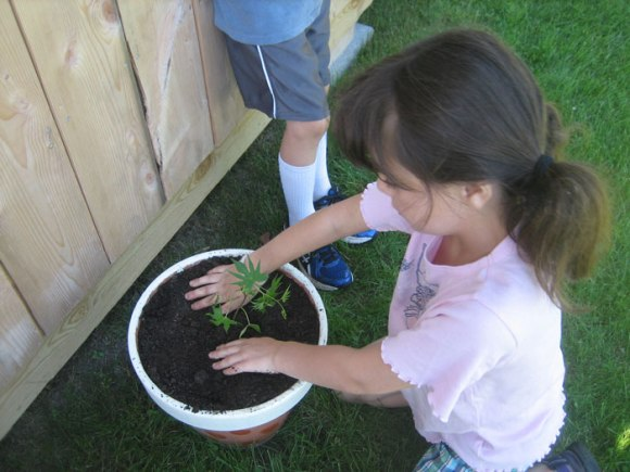 We made signs for the garden and we painted pots.  We read books about the garden.  I liked that.  We also did a lot of planting and made trellises.  That's good for the garden because the plants can climb up them.  Shana, age 7