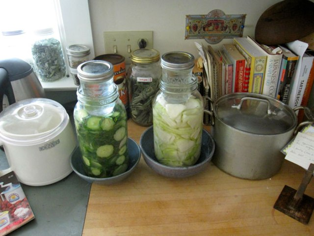 pickling-counter