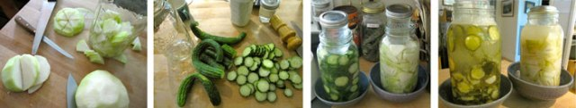 Steps along the way: fermenting kohlrabi and cucumber pickles.