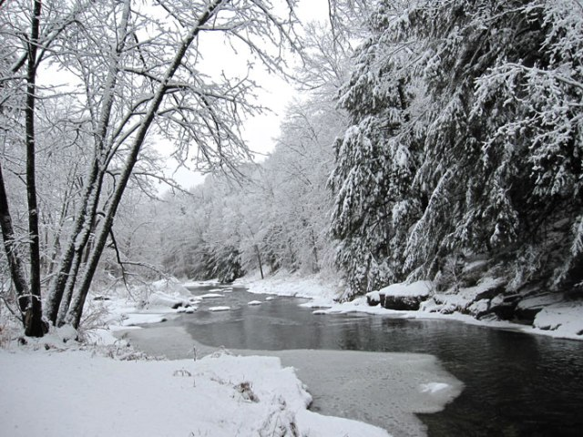 Snowy Lewis Creek