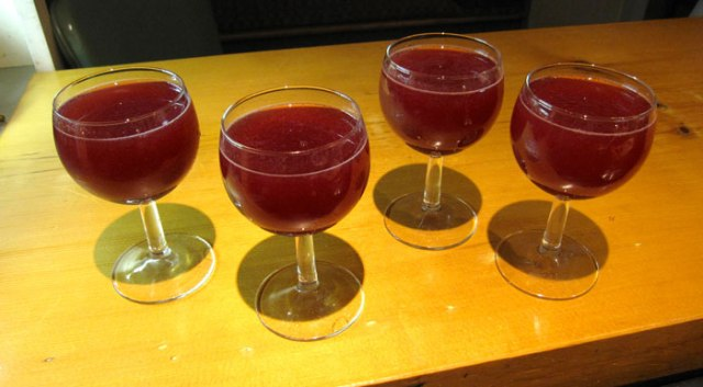 elderberry-kombucha-1