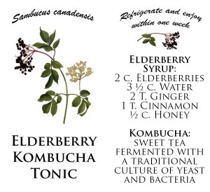 Elderberry-Tonic
