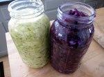 packed-in-jars