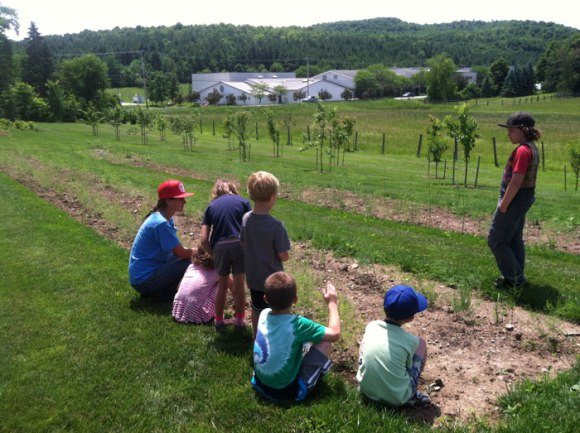 A lovely visit to Philo Ridge Farm.  How lucky to have our school so close to a farm (see it across the road?).