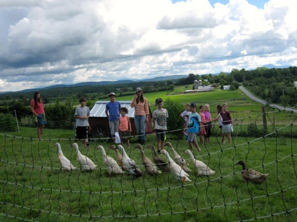 Collecting Philo Ridge Farm duck eggs