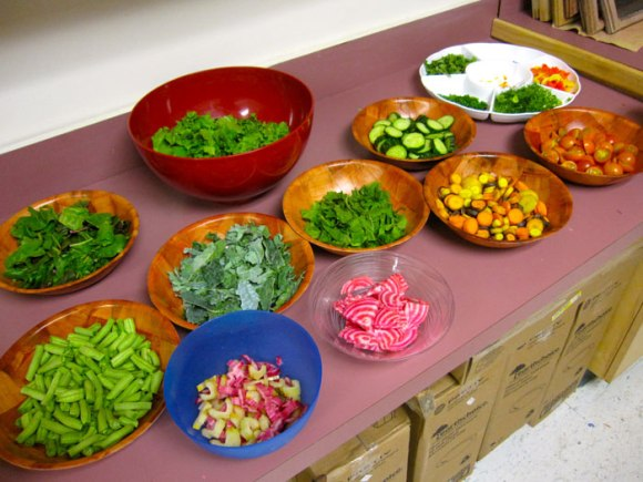 Our Rainbow Salad Bar - all grown in the school garden!!