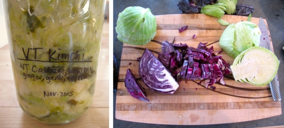Kimchi from all Vermont-grown veggies ready for the fridge and chopped cabbage on its way to becoming sauerkraut.