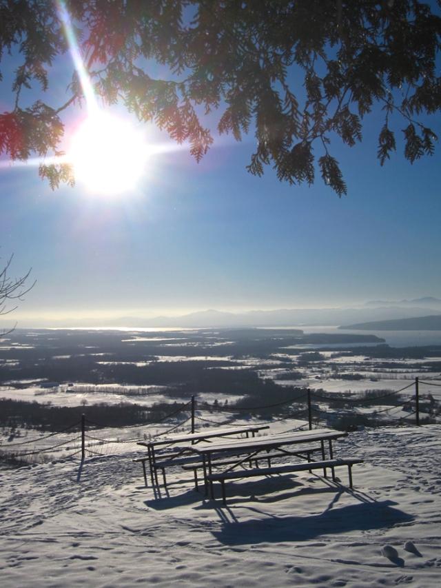 wintery-picnic