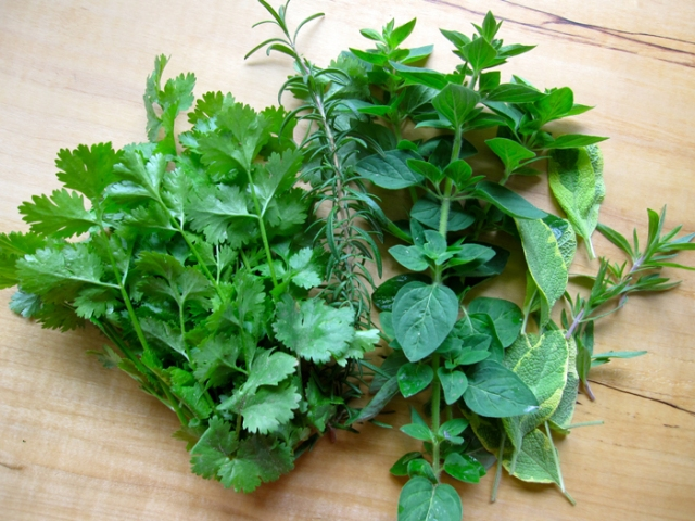 spring-herbs1
