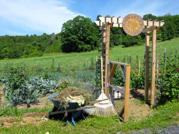 wheelbarrow-of-weeds