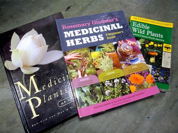 medicinal-herb-books